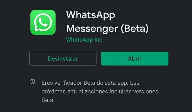 Estos son los problemas más comunes al momento de querer actualizar WhatsApp y no poder en el intento. (Foto: MAG)