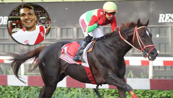 Paolo Guerrero tiene un caballo campeón. (USI/Jockey Club del Perú )