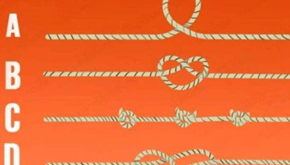 ¿Qué cuerda crees que es más larga? Este test psicológico podría revelarte tu nivel de inteligencia | Foto: iProfesional