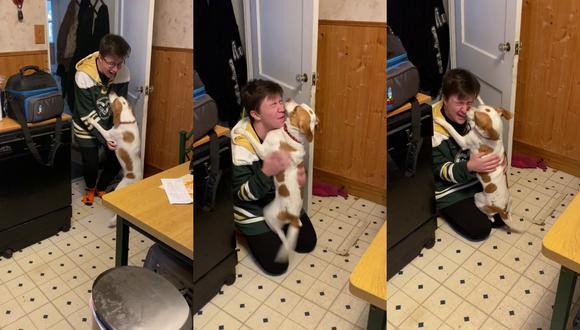 Un video viral muestra la insólita reacción de un perro al ver por primera vez en meses a su persona favorita al llegar a casa.   Crédito: u/Fnmb-1978 / Reddit.