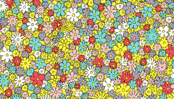 La abeja se encuentra inmersa entre las flores de pascua y el desafío consiste hallar en el menor tiempo posible. Solo tienes 30 segundos.