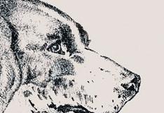 Muchos no pueden resolverlo: ¿logras ver al hombre oculto en el perro del reto viral? [FOTOS]