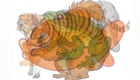 El animal que veas primero en esta imagen revelará los rasgos que oculta tu subconsciente.   Foto: mdz