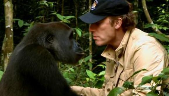 El emotivo reencuentro entre un gorila y su cuidador que lo liberó en la selva años atrás. (Foto: Enrique Van Rysselberghe Herrera / Facebook)