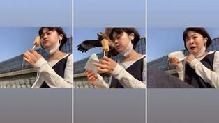 Viral: Águila asusta y roba alimento a joven asiática
