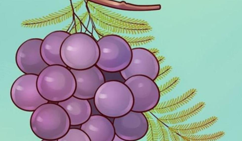 Desafío visual: halla el error en la imagen viral de la uva que es tendencia en redes. (Foto: Facebook)
