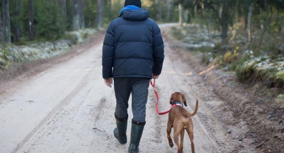 Se viralizó en Facebook el instante en que un hombre y su perro se entretienen al ritmo de una de sus canciones preferidas. (Foto referencial / Pixabay)