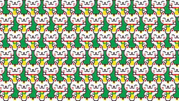 El reto viral del momento consiste en encontrar los gatos distintos al resto en la imagen. (Foto: Noticieros Televisa)