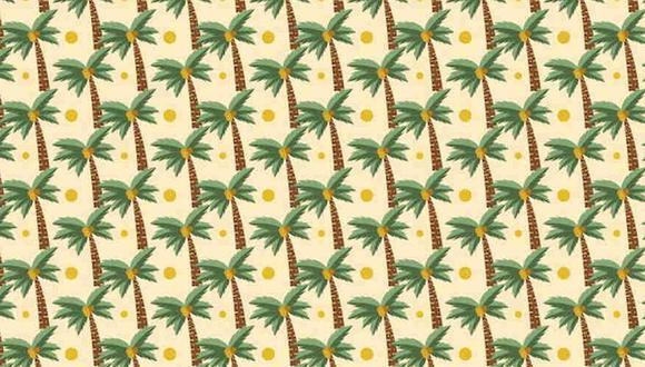 En la imagen hay palmeras distintas al resto y tienes que hallarlas. (Foto: Noticieros Televisa)