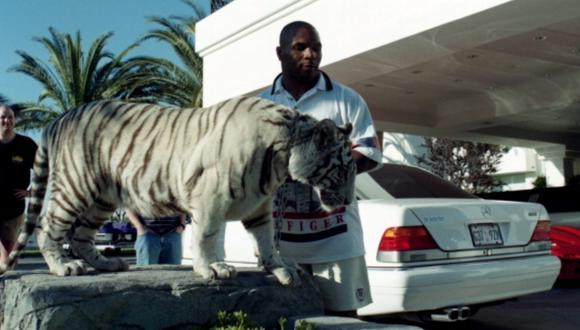 Mike Tyson junto a su tigre blanco. (Foto: Getty Images)