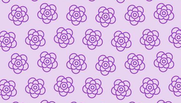 Participa en este acertijo visual de las redes sociales y encuentra la flor diferente en la imagen (Foto: Genial.guru)