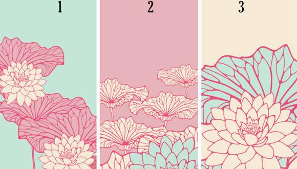 Elige la flor que más te guste y conocerás aspectos sobre tu personalidad. | Foto: bioguia
