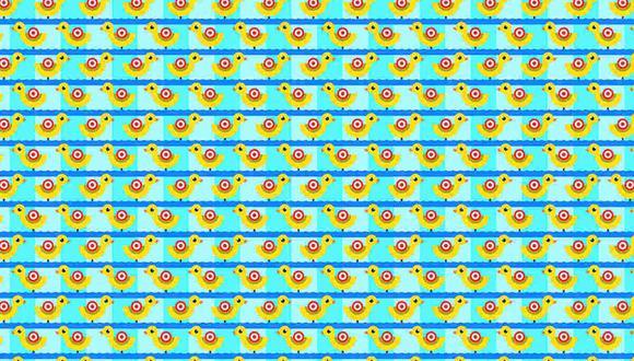 Abre bien los ojos y halla los 3 patos que nadan en sentido contrario. (Foto: Noticieros Televisa)