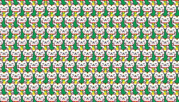 Hay 2 gatos diferentes al resto en la imagen y tienes que hallarlos. (Foto: Noticieros Televisa)