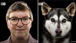 Video viral: ¿En verdad las mascotas se parecen a sus dueños?