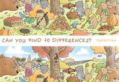 Un reto viral que no superan: encuentra ahora la 10 diferencias en 30 segundos [FOTO]