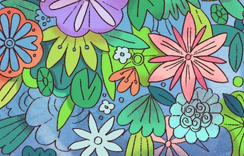 Viral: halla a la tortuga escondida entre las flores de colores de la imagen (Foto: Facebook)