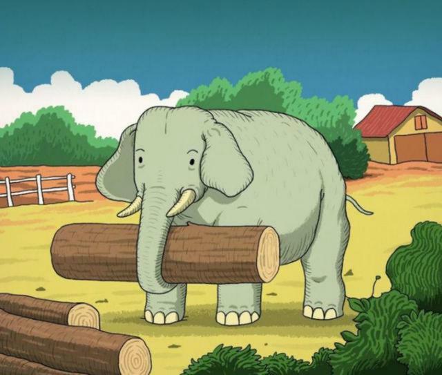 Retrouvez l'animal à côté de l'éléphant que peu de gens voient sur les réseaux sociaux.  (La diffusion)