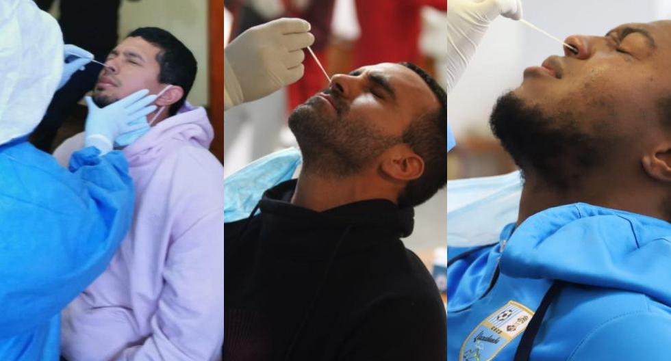 Equipos de la Liga 1 que pasaron pruebas de descarte de coronavirus (Foto: Liga 1)