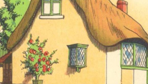 ¿Puedes identificar cuál es el error en esta ilustración? Este reto viral ha sido imposible de resolver. | Foto: Radio Mitre