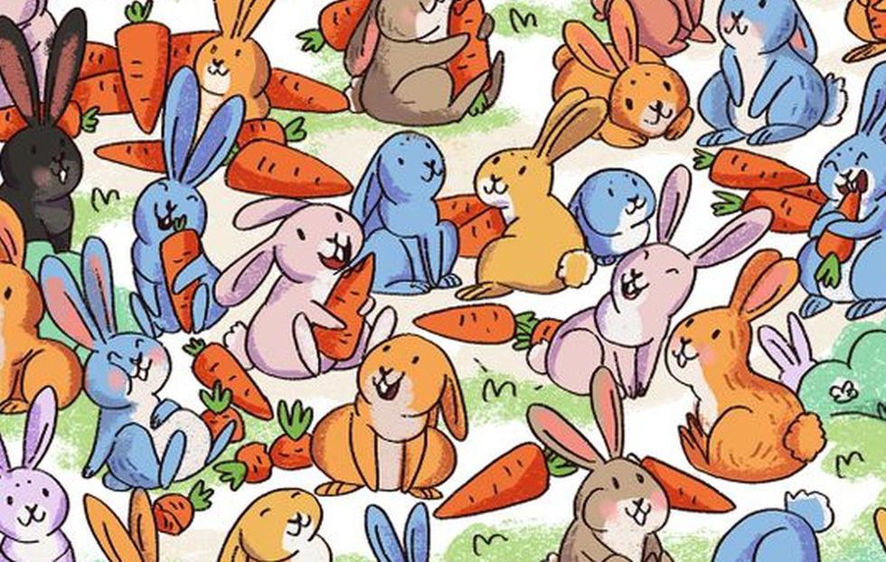 Reto visual: ¿logras ver al conejo que confundió su zanahoria con un cono en la imagen? (Foto: Facebook)