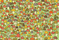 ¿Puedes hallar al ratón entre los hongos? Solo un 2 % superó este reto viral