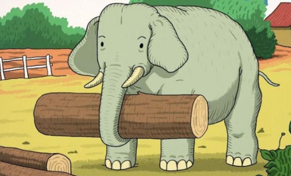 Encuentra al animal oculto junto al elefante en el siguiente reto visual. (Foto: Facebook)