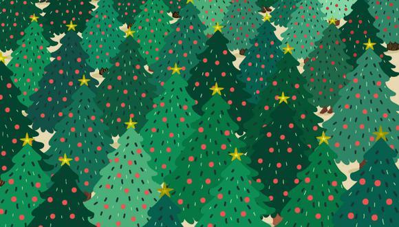 Tienes que hallar 3 personas disfrazadas de árbol de Navidad en la imagen. (Foto: Noticieros Televisa)