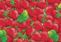 Reto viral de las fresas: resuelve el desafío visual de las 5 mariquitas [FOTOS]
