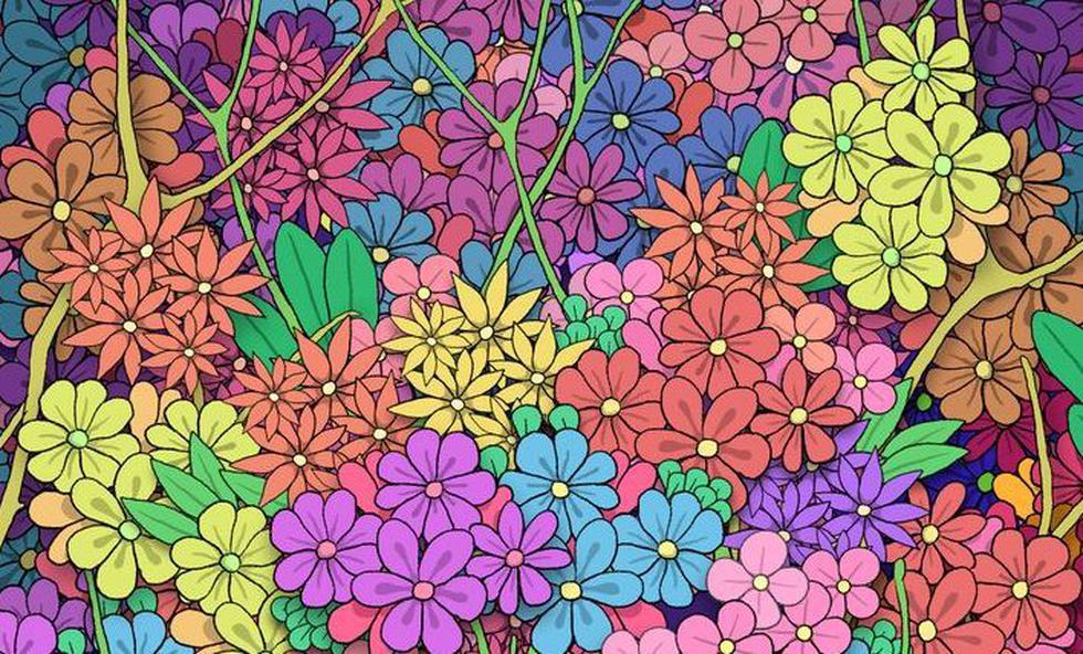 El desafío visual de las plantas que te pide ubicar el corazón oculto entre ellas. (Pinterest)