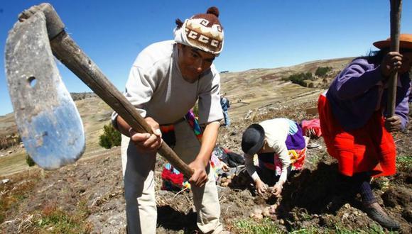 Bono Rural 760 soles: el Gobierno espera llegar a 800 mil hogares que se encuentran en pobreza y pobreza extrema en las zonas rurales. (FOTO: Andina)