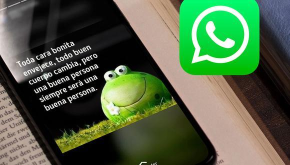 ¿Quieres volver a ver los estados de WhatsApp de alguien que te ha bloqueado? Usa este truco. (Foto: Mockup)