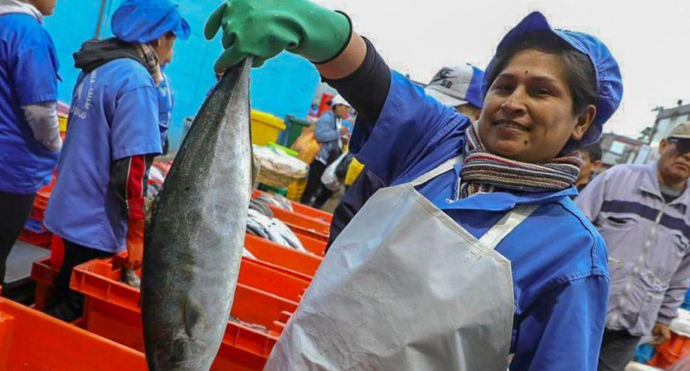 El resumen de noticias al domingo 29 de marzo en el Perú, a causa del Covid-19. (Foto: GEC)