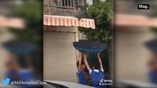 Viral: Niños salvan vida de gatito usando paraguas