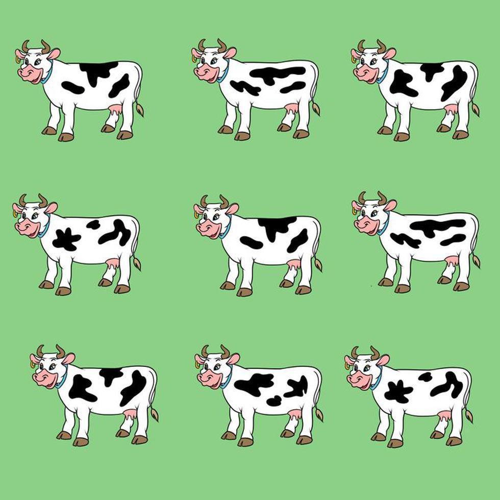Ubica la vaca que se diferencia a las demás de esta prueba visual. (Fotos: Facebook/Genial.guru)