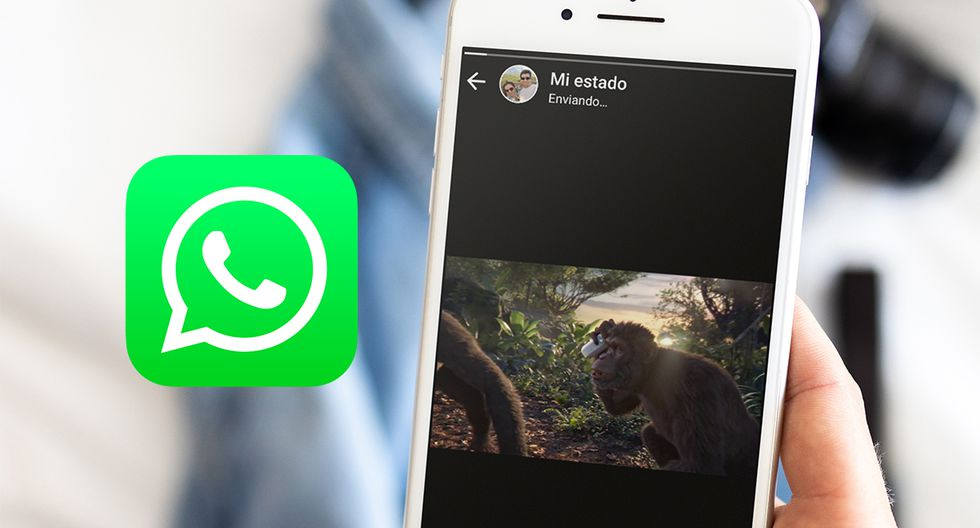 ¿Quieres saber cómo colocar tus videos de YouTube como Estados de WhatsApp? Aprende cómo. (Foto: WhatsApp)