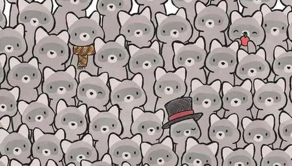 Reto solo para 'cracks': solo 1 de cada 5 personas encuentra al gato escondido entre los mapaches. (Foto. dudolf.com)