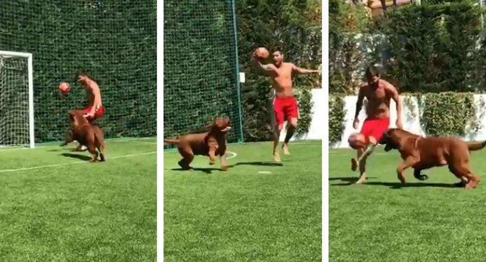 Twitter viral: Lionel Messi se luce con 'sombreros' a su perro que no le pudo quitar el balón. (Twitter)