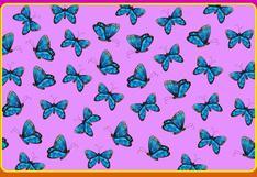 Solo el 2% superó este acertijo visual: encuentra la mariposa sin antena en la imagen en 20 segundos