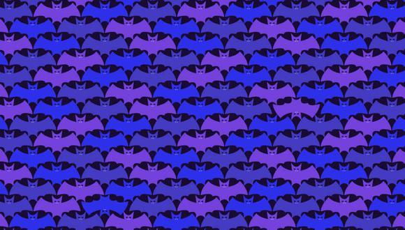 Tu misión, si decides aceptarla, es hallar los murciélagos de cabeza en la imagen. (Foto: Noticieros Televisa)