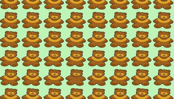 ¿Logras ver al oso distinto al resto? Muy pocos lograron resolver este acertijo lógico. | Foto: genial.guru