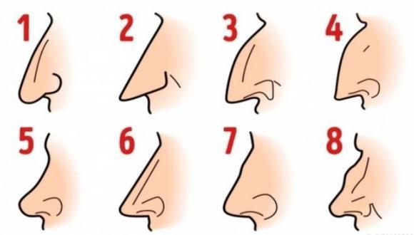 Mira el test de los tipos de nariz y la que se parezca a la tuya te dirá algo que no esperabas sobre ti. (Mdzol)