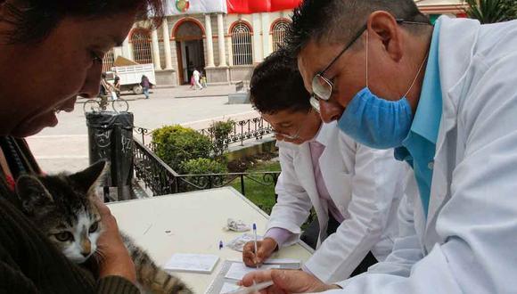 Vacunación antirrábica: cuándo y dónde vacunar a tu perro o gato en septiembre. (Foto: Alcaldía de CDMX)