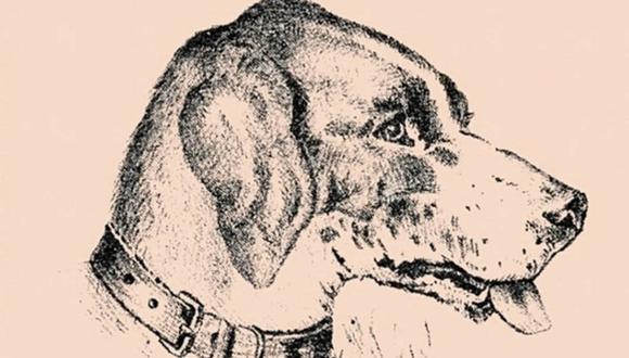 ¿Logras ver al hombre que está oculto en esta ilustración de un perro? Solo el 1% puede resolver este reto viral.  Foto: RadioMitre
