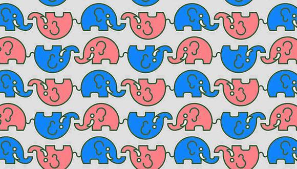 Tu tarea de hoy es encontrar los elefantes sin colmillos en la imagen. (Foto: Noticieros Televisa)