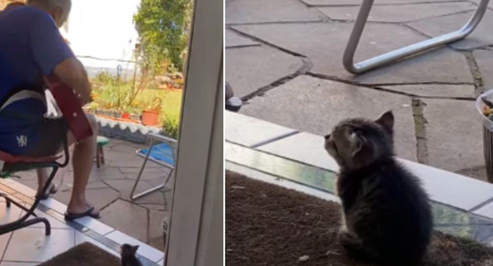 El hombre demostró el gran cariño que le tiene a su pequeño gato. (YouTube: ViralHog)