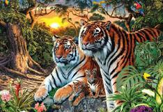 Pon a prueba tu agudeza visual: ¿Cuántos tigres hay en total en la foto? Descúbrelo sin trampas