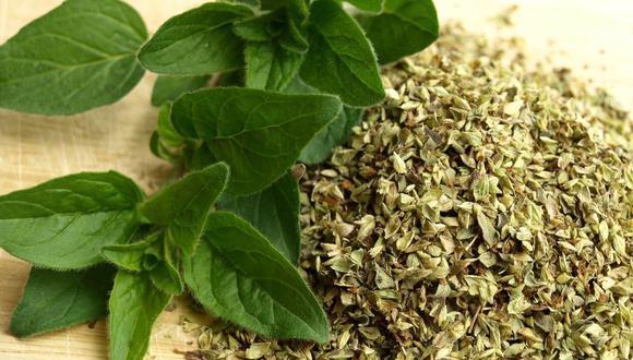 El orégano es fuente de vitaminas como la A, C, E y K, además de ser rico en fibra y minerales como el hierro, magnesio y potasio. (Foto: Pixabay)
