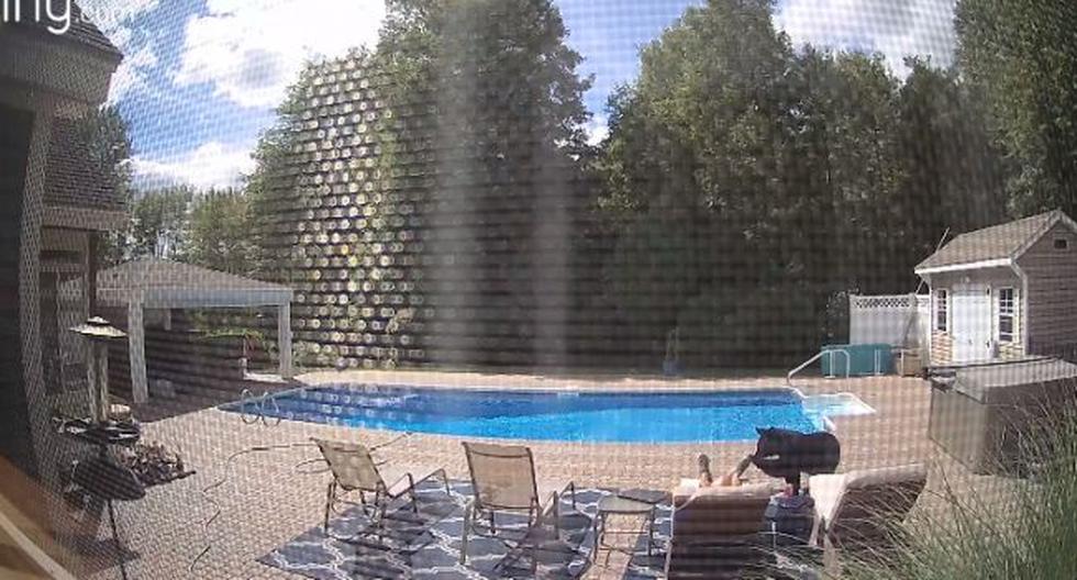 Oso invadió casa y despertó al dueño que estaba descansando junto a la piscina. (Foto: YouTube)