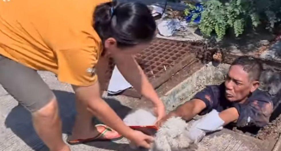 El rescatista logró salvar a la mascota, un perro raza poodle de 14 años.  Foto: YouTube/Newsflare